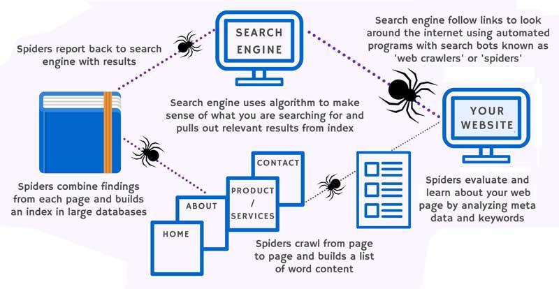 Essere visibili su Google La guida essenziale per comprendere cosa e come fare per iniziare 3